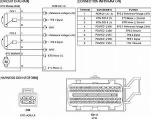 2002 Hyundai Sonata Cam Sensor Wiring Diagram