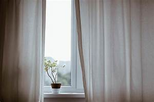 Grande Plante D Intérieur Facile D Entretien : des plantes d int rieur avec un entretien facile faire ~ Premium-room.com Idées de Décoration