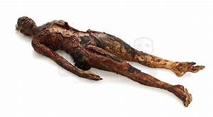 Burned Victims Body   Prop Store - Ultimate Movie Collectables
