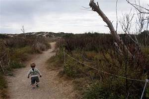 11 state parks scheduled for closure will remain open   L ...