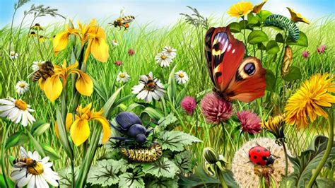 Bugs In by Get Rid Of Garden Insects Bugs Ants And Bees