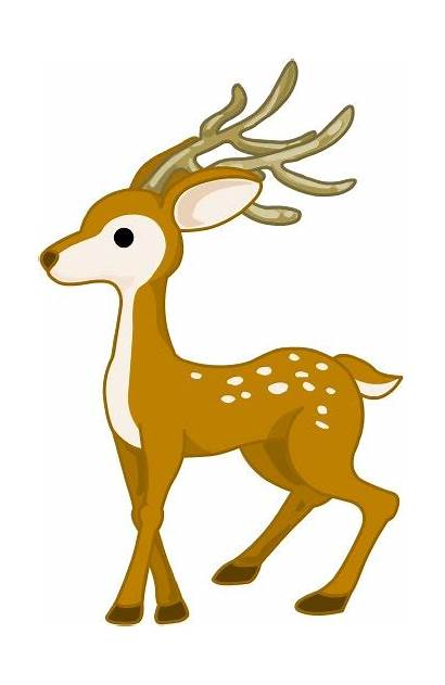 Deer Fallow Clipart Clipground Clip Spotted