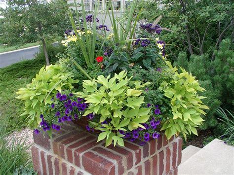 Photos Of Container Flower Gardens gardening gallery personal touch landscape gardening