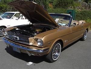 Prairie Bronze 1964 Ford Mustang Convertible - MustangAttitude.com Photo Detail