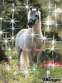 das schönste kinderzimmer der welt das schönste pferd der welt picture 114516840 blingee