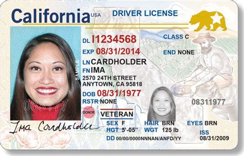 New Ca Driver's License Needed At Airport Gates By October 2020