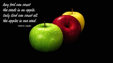 Apple Quote Quotes Or Sayings About Apples Quotesgram