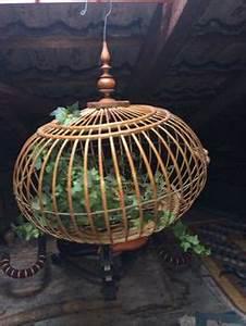 Vogelkäfig Selber Bauen : 1000 images about birdcages vogelk fig on pinterest ~ Lizthompson.info Haus und Dekorationen