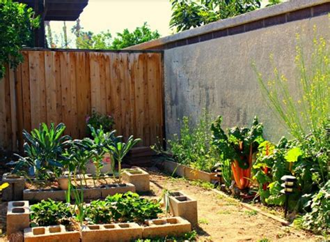 rumah minimalis  lantai  taman belakang produktif