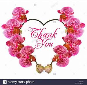 Unique 50+ Beautiful Thank You Cards Design Decoration Of