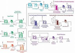Process Flow Diagram Bioprocess