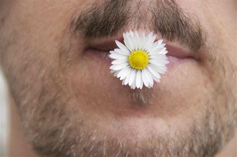 bocca di fiore l uomo dal fiore in bocca su emozioni