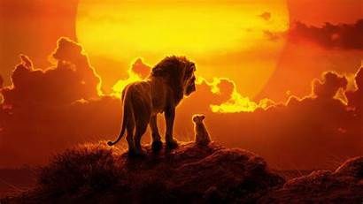 Lion King Wallpapers 2560 1440