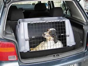 Grande Cage Pour Chien : cage de transport pour chien ~ Dode.kayakingforconservation.com Idées de Décoration
