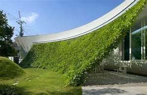 Grüne Wand Selber Bauen : den garten versch nern hier sind 48 ideen ~ Bigdaddyawards.com Haus und Dekorationen
