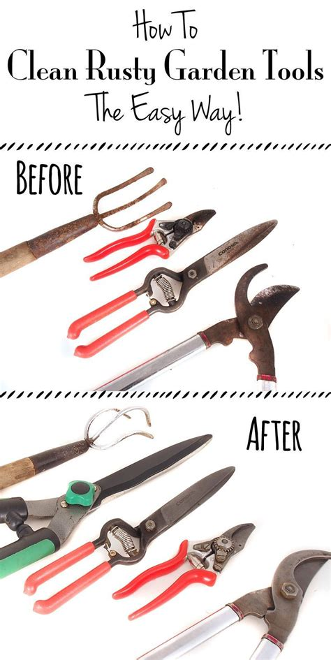 tools garden clean rusty easy cleaning way tool gardening works need growing equipment yard shears landscaping rust gardens use projects