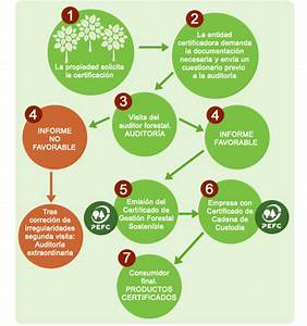 Gesti U00d3n Forestal Sostenible Y Certificaci U00d3n