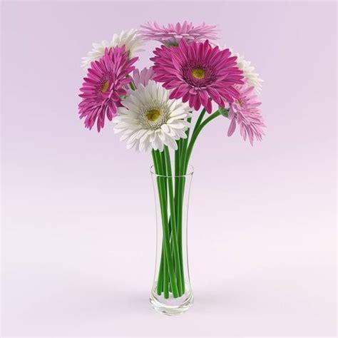vaso con fiori fiori da vaso piante appartamento