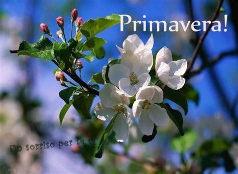 primavera immagini  fotos gratis da condividere