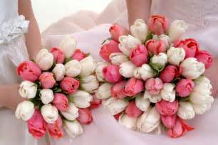 tulip bouquet wedding bouquet bridal white and pink tulips