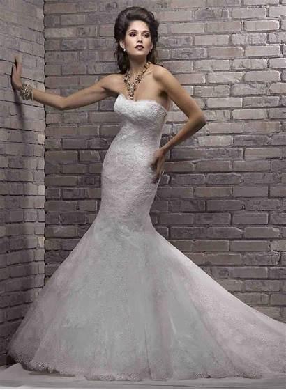 Mermaid Dresses Maggie Amazing Sottero Bride Lace