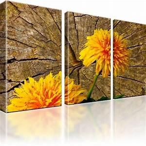 Dreiteilige Bilder Auf Leinwand : pusteblume blume bilder auf leinwand fotodruck dreiteilig ebay ~ Orissabook.com Haus und Dekorationen