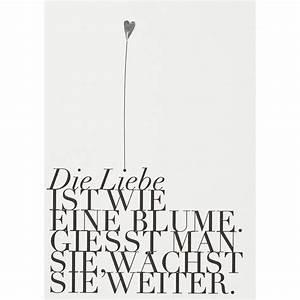 Liebe Ist Wie Eine Blume : r der online shop fanpostkarte die liebe ist wie eine blume online kaufen ~ Whattoseeinmadrid.com Haus und Dekorationen
