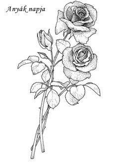 Rose Drawing Single Flower Outline Tattoo Stencil | Just