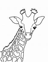 Giraffe Coloring Baby sketch template