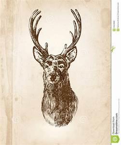 Deer stock vector. Image of christmas, paper, card ...