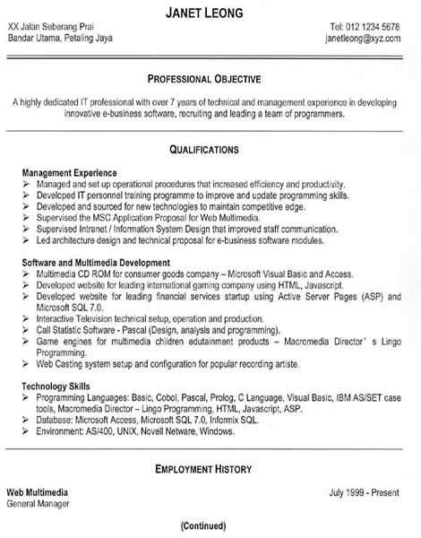 successful resumes exles best resume exle