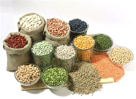 cuisine legumes vegan nutrition vegan diet plan