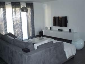 Salon Gris Blanc : salon gris et blanc 9 photos carabi ~ Dallasstarsshop.com Idées de Décoration