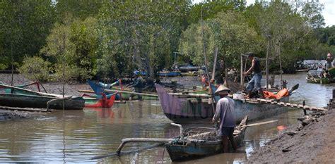 wisata mangrove surabaya wisata mangrove surabaya