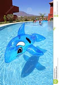 inflatable dolphin on blue swimming pool stock image image 219781