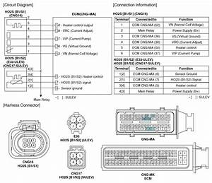 Kia Forte  Heated Oxygen Sensor  Ho2s  Circuit Diagram