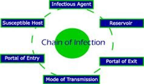 images  disease detectives  pinterest