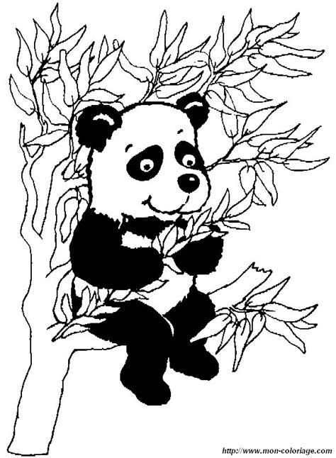 ausmalbilder panda bild panda