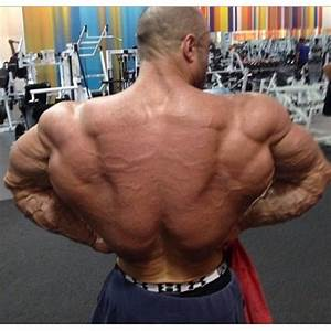 178 Best Bodybuilding Images On Pinterest