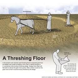 a threshing floor
