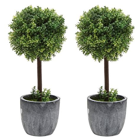 boxwood topiary trees set of 2 small realistic artificial boxwood topiary trees 1773