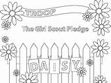 Scout Coloring Promise Daisy Printable sketch template