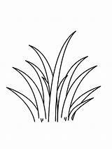 Grass Coloring Dibujos Trava Mycoloring Colorear Hierba Printable Colors Imprimir Gratis sketch template
