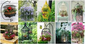 Amazing Collection of Eye-Catching Birdcage Planters for