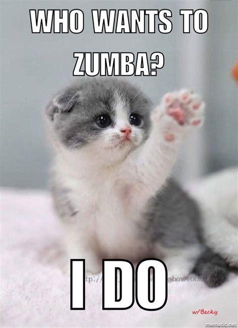 zumba cute kitten    zumba   becky zumba
