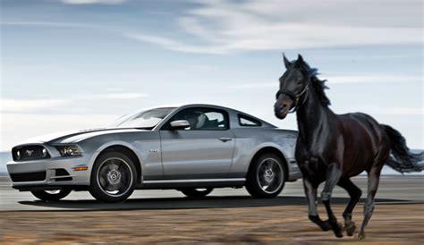 ferrari horse vs mustang horse pacificoautogroup just another wordpress com site
