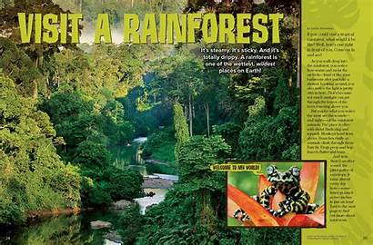 Rainforest Rick Ranger Places Tropical December Forest