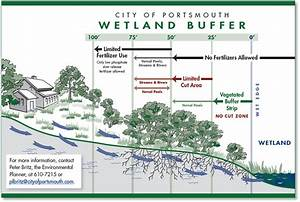 Wetland Buffer Info  U0026 Map