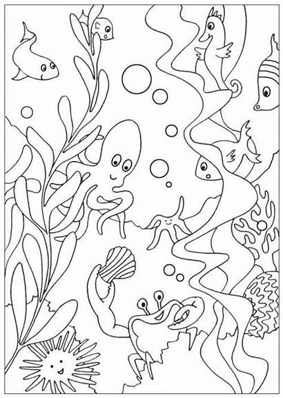 Coloring Pages Sea Ocean Under Animal Colouring