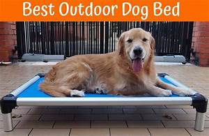 Review of the best outdoor dog bed us bones for Best outdoor dog beds reviews